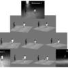 射影幾何に基づく多視点カメラの中間視点映像生成