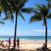 ヤシの木陰で。夢見た風景@カマラビーチ・プーケット