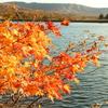 秋の信州! 紅葉の女神湖を目指してビーナスラインで絶景ドライブ!