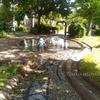 水がきれいなじゃぶじゃぶ池がある公園に連れて行ってもらいました