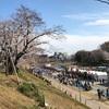 岡山さくらカーニバルに行ってみた。ツーリングじゃないけどw