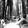 雨上がりに行きたい異世界との狭間 ~上色見熊野座神社~