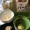 ①ミニトマトの定植🍅🌱室内水耕栽培