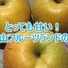 滋賀県で梨と言えば「もりやまフルーツランド」