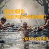 自動売買の運用実績 2019.08.09現在