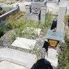 母とお墓参りに行ってきたよ。
