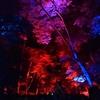 下鴨神社 光の祭へ行ってみたが、人が多すぎて退散