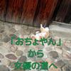 おちょやんから女優の道へ | 富田林市の豪商への奉公が転機に!