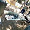 冷製パスタにホタテステーキにと、我が社のバーベキューはもはや社風である。
