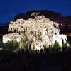 三春の滝桜を見てきたり