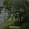 1325食目「ブロッコリーのつぶつぶっていくつあるの?」実際に数えた人がいた!