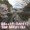 線路の上を歩ける⁉京都南禅寺周辺をぶらり旅