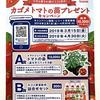 \今年も愛され続けて24周年!/カゴメトマトの苗プレゼントキャンペーン総計10,300名にプレゼント