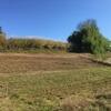 ラボ畑2&3 小麦の種蒔き終了