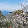 花は桜 君は美し