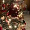 【クリスマスの本当の意味】今、自分が存在する事に感謝するのがクリスマス。