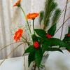 ガーベラで彩るお正月
