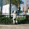 上野動物園初め