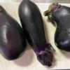 『丑の日レシピ』うな丼代わり!簡単な茄子の蒲焼きの作り方を追及した話
