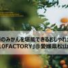 愛媛のみかんを堪能できるおしゃれカフェ「10FACTORY」@愛媛県松山市