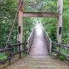 甘利山から林道を巡って石空渓谷へ<トレッキング編>