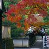京都 紅葉100シリーズ   東福寺 (龍吟庵) NO.103