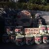 乃木神社で乃木坂46の成人式をみてきた 生の梅澤美波ママの感想!