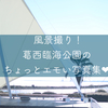 風景撮り!葛西臨海公園のちょっとエモい写真集!