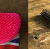 しっとり手触りのいい髪をつくるおすすめヘアブラシ2点~「タングルティーザー」&「かなや刷子の天然豚毛ブラシ」
