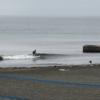 小波の極み、今日は陸トレ、サーフスケート!波情報 湘南鵠沼