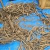 ライ麦の脱穀作業体験