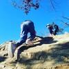 登り方もそれぞれ