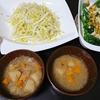 ネギ味噌、白菜じゃこサラダ、スティックセニョールチーズやき、味噌汁