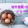 【不妊治療】体外受精・ショート法の排卵誘発方法とスケジュール(スプレキュアと自己注射)