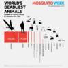 人間の天敵は「蚊」!!!フィリピンにてデング熱流行