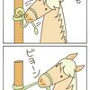 賢い馬、器用な馬