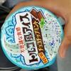 トルコ風アイスチョコミント