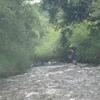 蒸し暑いので、川へ釣りにいく