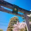 Dragon Road X 14 - 桜咲く晴明神社