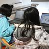 【授業風景】しれとこ斜里校で無料体験授業を実施しました!