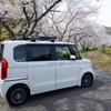 松崎、大沢、黄金崎の桜 🌸