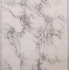 ドラッカー・コレクション 珠玉の水墨画