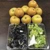 味覚の秋です。EM梨とEMぶどう。月末にはEMリンゴ。食欲の秋。