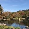 《紅葉》の季節じゃなくても渋滞している京都と《ORENO PAN》のクロワッサン