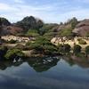 徳川家康が家臣に与えた屋敷跡「新宿御苑」。見どころは?桜は?