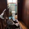 晴れたので猫トイレのお掃除の間にお出かけの許可をした