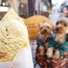 繩手通りで食べ歩きしながら犬の散歩♪