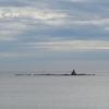 今日は「茅ヶ崎海岸」へ・・・。