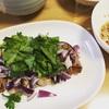 【タイ料理】ナムトックムーน้ำตกหมูを作った!