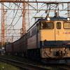 貨物列車撮影 4/28 EF652067充当 79レなど